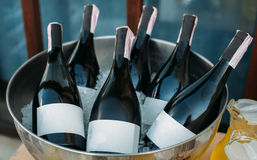Bottles of wine in ice bowl royalty free stock image