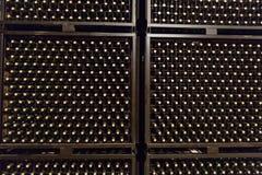 Bottles in winery cellar Stock Image