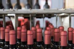 Bottling line Stock Image