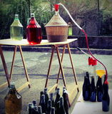 Bottling wine from the Carboy bottles Stock Photos