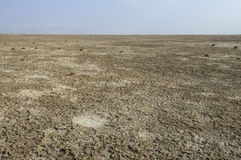 Bottom of Aral Sea. Bared the bed of the Aral Sea. Neighborhood Barsakelmes island Royalty Free Stock Photography
