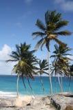 Bottom Bay Barbados Stock Image