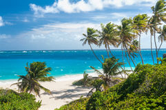 Bottom Bay. Is one of the most beautiful beaches on the Caribbean island of Barbados. It is a tropical paradise with palms hanging over turquoise sea Royalty Free Stock Photos