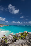 Bottom Bay is one of the most beautiful beaches on the Caribbean Royalty Free Stock Images