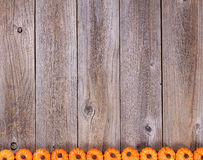Bottom border of autumn holiday pumpkin decorations on rustic wooden boards royalty free stock photography