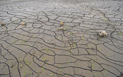 Bottom of dried up lake bed Royalty Free Stock Image