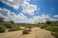 Bottom of Dry Riverbed. Dry sandy riverbed in foothills of American southwest stock photography