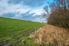 At the bottom of an embankment in the autumn season Royalty Free Stock Image