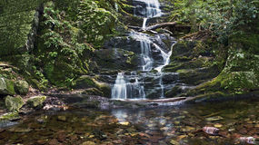 Bottom Falls. The scenic Buttermilk Waterfalls in Stokes State Forest in Northern New Jersey Royalty Free Stock Images