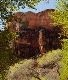 Bottom of Grand Canyon scene Royalty Free Stock Photo