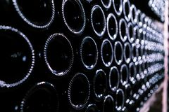 The bottom of wine bottles in cellar Royalty Free Stock Photography