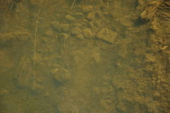Bottom of the river. Stones and mud on the river bottom Royalty Free Stock Photo