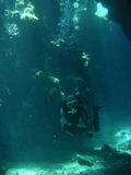 Bottom of the Sea. Under Water Scene royalty free stock photography
