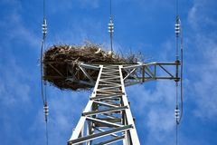 empty bird nest made with branches of trees at the top of an electrical tower of high voltage that conducts electricity to houses royalty free stock image