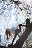 Bottom view charming cute slim girl gymnast is on top of unusual tree without leaves and executes elements of stretching. On background bright sun stock photography