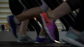 Female feet in running shoes run on a treadmill. Bottom view of jogging four women in sneakers stock video