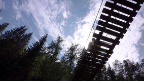 Bottom view of man on suspension bridge. Stock footage. Man walks on wooden suspension bridge on background of spruce stock footage