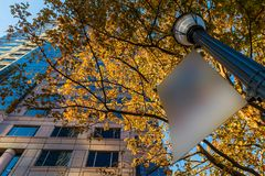 Bottom view of skyscraper and lamppost with sign, Atlanta, USA Royalty Free Stock Image