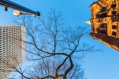 Bottom view of tree, church tower and skyscraper, Atlanta, USA Royalty Free Stock Photos