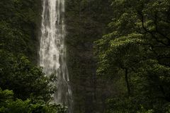 Bottom of Waimoku Falls. In Haleakala National Park, Hawaii, Maui royalty free stock images