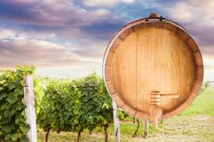 Wine barrel mock up. The bottom of a wine barrel over beautiful vineyard sunset, wine mock up royalty free stock photography