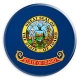 Bottone dello stato USA: Illustrazione del distintivo 3d della bandiera dell'Idaho su fondo bianco illustrazione vettoriale