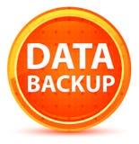Bottone rotondo arancio naturale del backup dei dati royalty illustrazione gratis