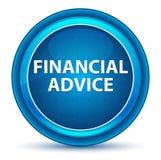 Bottone rotondo blu del bulbo oculare finanziario di consiglio illustrazione vettoriale