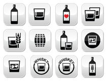 Bottoni dell'alcool del whiskey o del whiskey messi Fotografie Stock Libere da Diritti