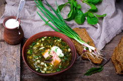 Botvinia ,traditional Russian cold soup Stock Images