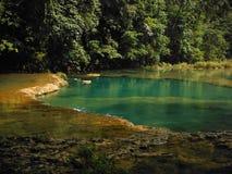 Bouée de sauvetage orange dans la piscine de Semuc Champey de turquoise Images libres de droits