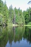 boubin湖 免版税库存图片