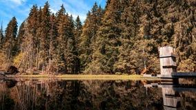 Boubin jezioro, pradawny las, Artystyczny Lasowy park narodowy fotografia royalty free