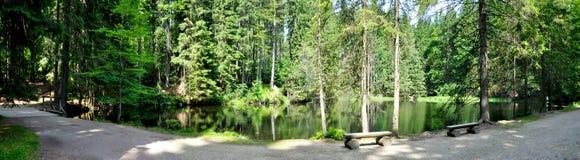 Boubin lake Royalty Free Stock Photo