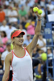 Bouchard Genie CAN (12) Royalty Free Stock Photography