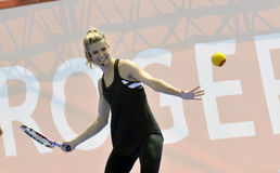 Bouchard Genie CAN (1) Royalty Free Stock Photography