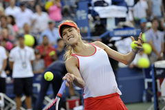 Bouchard Genie KANN (13) Stockfotos
