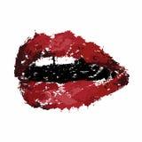 Bouche avec des dents, lèvres Photos libres de droits
