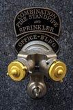 Bouche d'incendie à New York Photo stock