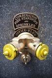 Bouche d'incendie Photographie stock libre de droits