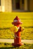 Bouche d'incendie Photos libres de droits