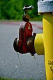 Bouche d'incendie d'égoutture Image libre de droits