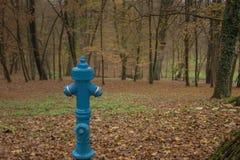 Bouche d'incendie de l'eau avec le fond en bois de chute photographie stock libre de droits