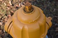 Bouche d'incendie jaune Photo libre de droits