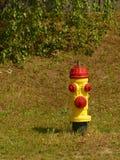 Bouche d'incendie jaune et rouge Photographie stock libre de droits