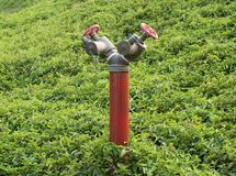Bouche d'incendie rouge Photo stock