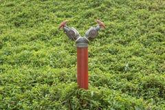 Bouche d'incendie rouge Photos libres de droits