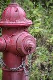 Bouche d'incendie rouge Photo libre de droits