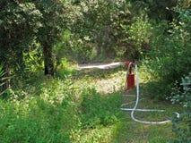 Bouche d'incendie rouge avec le tuyau d'incendie Image libre de droits