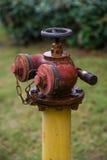 Bouche d'incendie rouillée photo stock